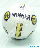 ball_winner_dynamic_sala